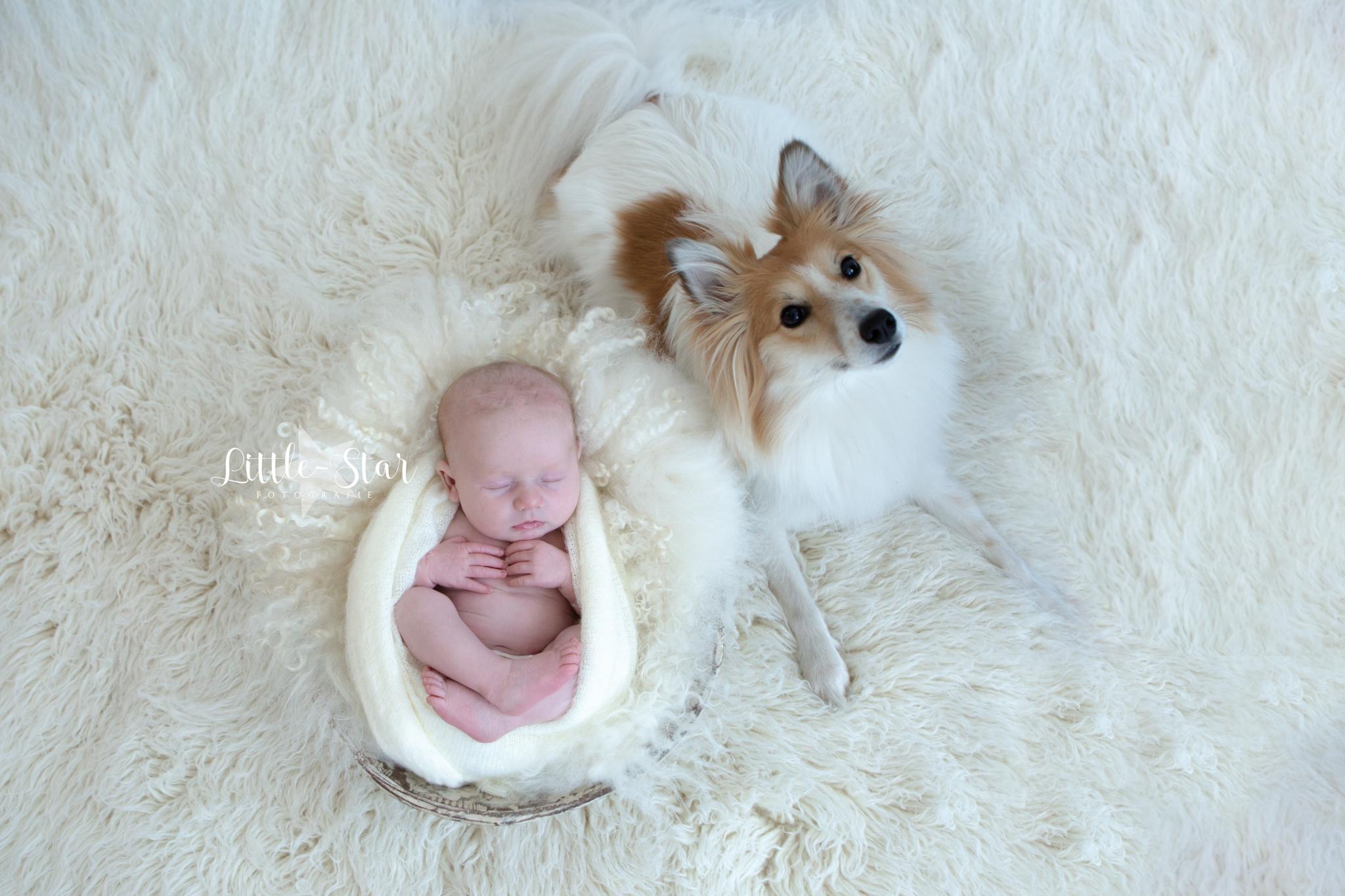 Pasgeboren baby fotoshoot Roosendaal Breda Sofie